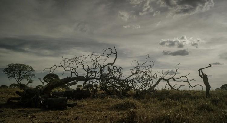 """Cena do filme """"Querência"""" (Créditos: Sabrina Maniscalco/ Divulgação)"""